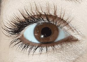 How do i get my eyelashes to grow back